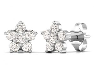 Earth Star Diamonds FE0920 Round Brilliant Cut Diamonds Studs in White Gold